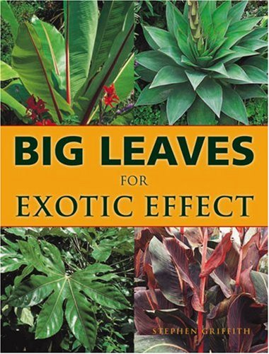 Big Leaves for Exotic Effect por Stephen Griffith