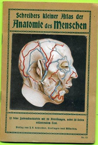 Schreibers kleiner Atlas der Anatomie des Mesnchens - 1é feine Farbendrucktafeln mit 20 Abbildungen, nebst 20 Setien erlauterndem Text
