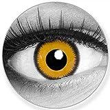 Lenti a contatto colorate Lunatic Sun Giallo Nero + contenitore – Funnylens marchio di qualità, 1 Coppia (2 pezzi) colorato Lenses perfetto per Halloween, Carnevale, Feste o carnevale
