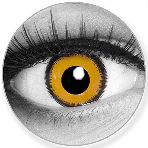 Funnylens Farbige Kontaktlinsen Lunatic Sun gelb schwarz - ohne Stärke 2er Pack + gratis Behälter - 12 Monatslinsen - perfekt zu Halloween Karneval Fasching oder Fasnacht