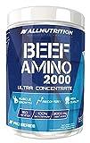 ALLNUTRITION Beef Amino Proteine Aminosäuren Kraft und Ausdauer Sport Training Bodybuilding Nahrungsergänzung (300 Kapseln Beef Amino)
