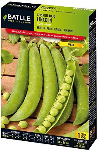 semillas-batlle-guisante-enano-lincoln-caja-1kg