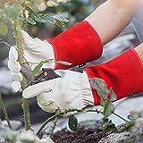 garten handschuhe - Vergleich von