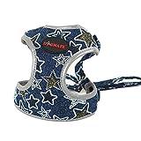 Dogmate Sterne Welpengeschirr Denim Hundegeschirr Atmungsaktiv für Klein Hunde Jeans Verstellbare Brustgeschirre Weich Haustier Vest Harness mit Hundeleine Hundeführleine (S, blau)