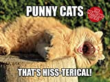 The Meme-Ing of Life: Punny Cats: That's Hiss-Terical