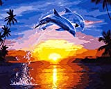 wowdecor Malen nach Zahlen Kits für Erwachsene Kinder, Anzahl Gemälde–Delfin Sonnenuntergang Meer Landschaft 40,6x 50,8cm Frameless