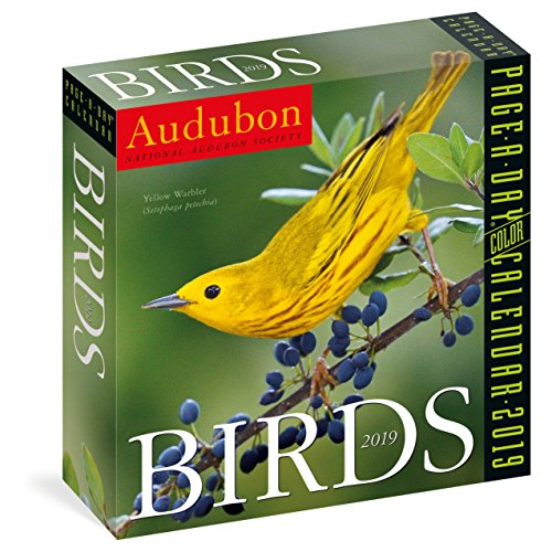 2019 Audubon Birds Colour Page-A-Day Calendar - Audubon Birds Of America