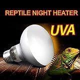 ToomLight UVA + UVB Reptile Glühbirne Schildkröte Heizung Sonnenbaden UV-Lampe Amphibien Eidechsen Temperatur Vollspektrum Wärmebirne für Reptilien