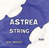 Astrea String 2492C Corde de Ré pour Violoncelle taille 1/2-1/4