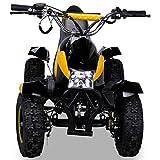 Miniquad Kinder Cobra ATV gelb / schwarz - 5
