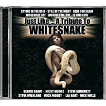 Just Like-a Tribute to Whitesnake