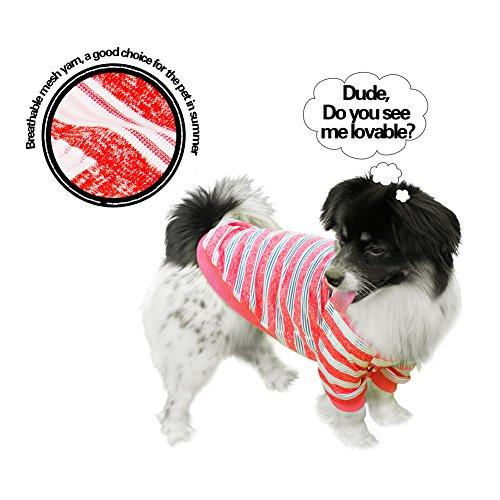 Dogibest Hunde-T-Shirt mit Netzgarn, gestreift, für Chihuahua, Rot, L: Neck: 12.5