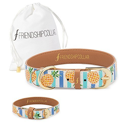 FriendshipCollar Dog Collar and Matching Bracelet Set - Pina Collarda - Vegan Leather - 8
