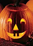 TROPICA - Kürbis - Jack O` Lantern (Cucurbita pepo) - 15 Samen
