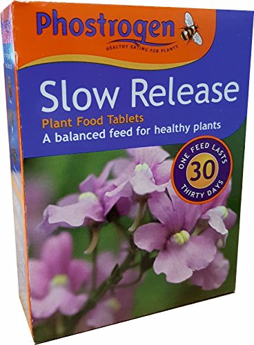 78g-phostrogen-slow-release-garden-plant-food-tablets-for-healthy-gardens