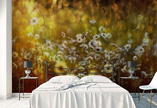Vlies Fototapete Fotomural - Wandbild - Tapete - Gänseblümchen Frühlingsblumen Wiese - Thema Blumen - XXL - 416cm x 290cm (BxH) - 4 Teilig - Gedrückt auf 130gsm Vlies - 1X-51518VEXXXXL -