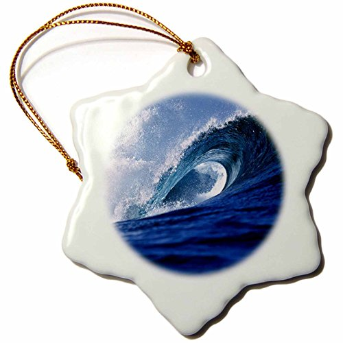 3dRose Fiji Islands, Tavarua Surfer sur Internet, Cloudbreak, Waves-oc01Rer0008-ric Ergenbright Flocon de Neige Ornement, Multicolore, 7,6cm