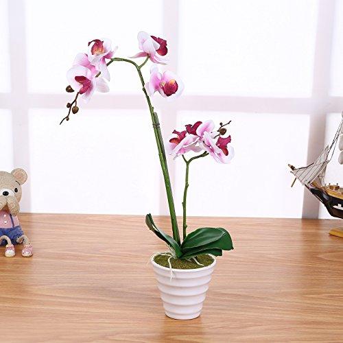 Orchidee Künstlich Weiß / Lila mit 2 Rispen 40cm I ECHT WIRKEND I Künstliche Orchideen Phalaenopsis Kunstblume im Topf STAR-LINE®