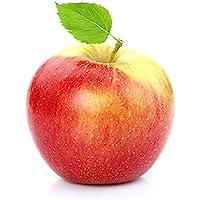Obst & Gemüse Bio Apfel Santana (2 x 1000 gr)