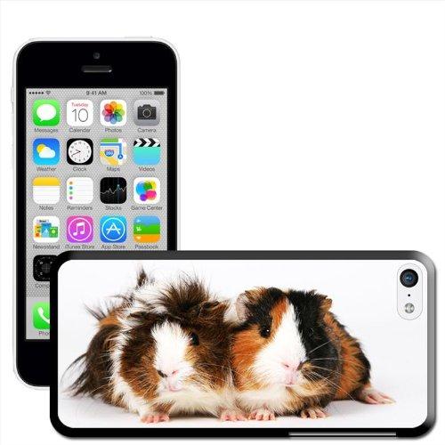 rongeurs-coque-arriere-rigide-detachable-pour-apple-iphone-modeles-plastique-guinea-pigs-iphone-5c