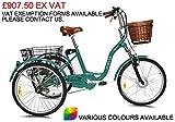 Jorvik, Elektrisches Dreirad für Erwachsene aus Aluminium im alten niederländischen Stil, 61 cm hoch, 250W/36V, grün