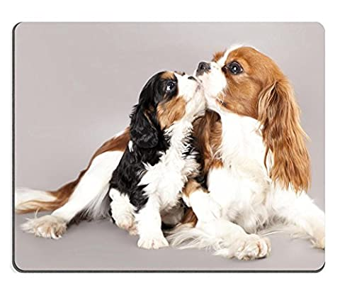MSD Natural Rubber Mousepad IMAGE ID: 12195265 Litter of Cavalier
