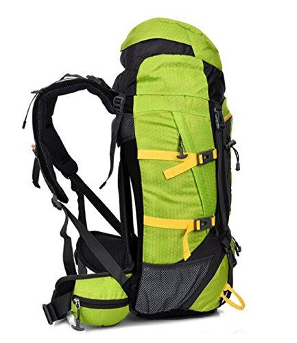 Neu Sport Rucksack Bergsteigen Tasche Mit Federung Halter Reise Tasche 55L Green