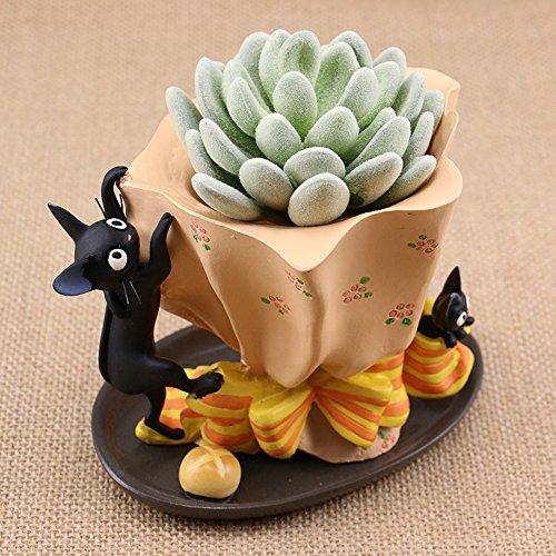 heyfair Japan Animation Katze Jiji Kaktus Sukkulente, Übertopf Topf Container Gardens - Box Cactus Katzen