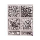 Ranuw Transparent Stempel (Blumenwünsche) DIY Handwerk Silikon Clear Stamps Für Album Foto Sammelalbum Präge Scrapbooking