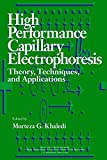 High Performance Capillary Electrophoresis: Theory, Techniques, and Applications (Chemical Analysis: A Series of Monographs on Analytical Chemistry and Its Applications, Band 146)