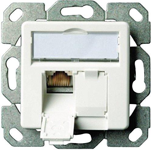 Telegärtner Datenanschlussdose Cat6A 2-Fach 2xRJ45 J00020A0500 AMJ45 8/8 UP/50 alpinweiß, 5 V, Weiß