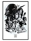 Poster 61 x 91,5 cm cadre noir brillant 40th Anniversary Montage de Star Wars