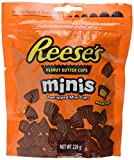 Reese's Mini Peanut Butter Cups Pouch, 226g