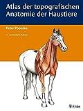 Atlas der topografischen Anatomie der Haustiere: Einbändige Ausgabe