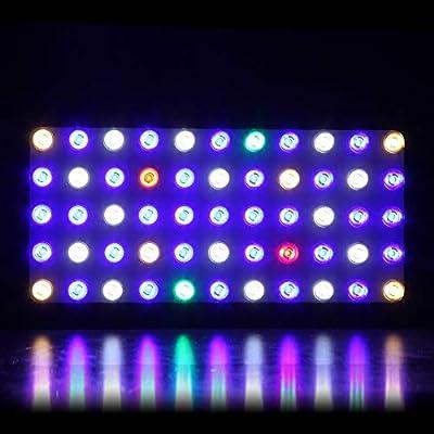 Éclairage de Bocal à Poissons Animaux Illumination Dimming Variation 165W Reef Aquarium LED Plantes Aquatiques Plantes Corail Croissance Réservoir Lampes de réservoir de Poisson