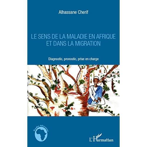 Le sens de la maladie en Afrique et dans la migration: Diagnostic, pronostic, prise en charge (Études africaines)