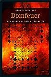 Domfeuer (Ein Krimi aus dem Mittelalter) - Dennis Vlaminck