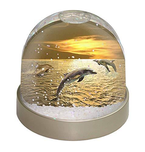 Sunset Dome (Advanta Gold Sea Sunset Delfine Snow Dome Globe Geschenk, Mehrfarbig, 9,2x 9,2x 8cm)