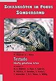 Schildkröten im Fokus - Sonderband: Testudo – Häufig gehaltene Arten