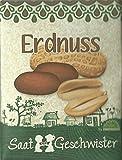 Die STadtgärtner Erdnuss-Saatgut | Samen für Erdnüsse im Garten, Balkon oder Terrasse | zum Selbstpflanzen