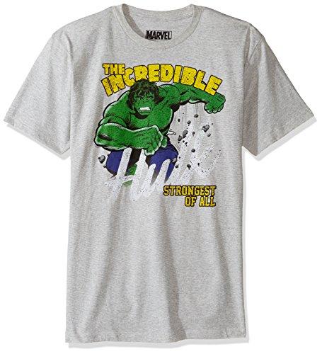 Marvel Men's Stomping Hulk Short Sleeve T-Shirt