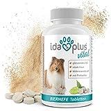 Ida Plus - Bierhefe-Tabletten mit Sollbruchstelle - optimale Pflege für glänzendes Fell & kräftige Haut - reich an B-Vitaminen, Mineralien & Spurenelementen - für ihren Hund & ihre Katze - 120 Stück
