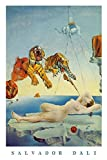 Salvador Dali Poster Dream Caused by A Bee Flight. (61cm x 91,5cm)