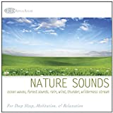 #7: Nature Sounds: Ocean Waves, Forest Sounds, Rain, Wind, Thunder, Wilderness Stream (Relaxing Sounds of Nature, Deep Sleep Music & Meditation)