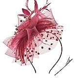 DRESHOW Fascinators Chapeau Flower Mesh Rubans Plumes sur un bandeau et un clip Tea Party Headwear pour les filles et les femmes
