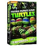 Teenage Mutant Ninja Turtles - Temporada 3 [DVD]