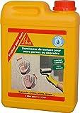 Fixateur pour mur, Durcisseur de surface, 2L, Blanc