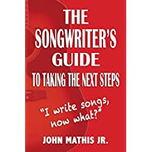 The Songwriter's Guide To Taking The Next Steps: I Write Songs, Now What? (English Edition)