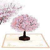 Pop Up Carte 3D, Vegena Romantique Sakura Carte de vœux, 3D Arbre Sakura Carte pour Fete Saint Valentin Cadeaux, Anniversaire Invite Mariage-chic, élégante, originale, cadeau...