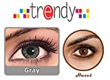 Trendy Hazel and Grey Monthly Contact Le...